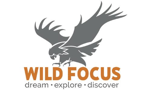 REFERENZ_Wild_Focus
